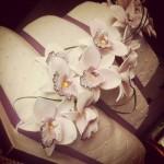 bryllupskake med orkideer
